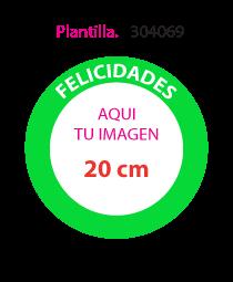 Plantilla 304069